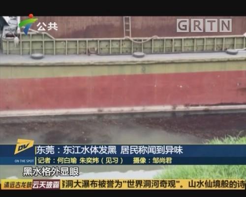 (DV现场)东莞:东江水体发黑 居民称闻到异味