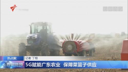 5G赋能广东农业 保障菜篮子供应
