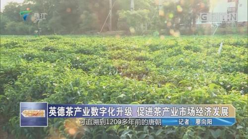 英德茶产业数字化升级 促进茶产业市场经济发展