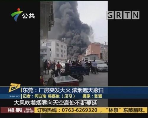 (DV现场)东莞:厂房突发大火 浓烟遮天蔽日