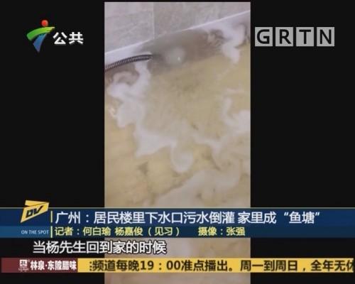 """(DV现场)广州:居民楼里下水口污水倒灌 家里成""""鱼塘"""""""