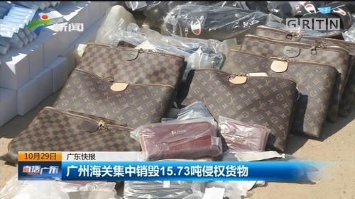 广州海关集中销毁15.73吨侵权货物