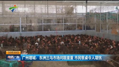 广州增城:东洲三鸟市场问题重重 市民餐桌令人堪忧