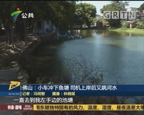 (DV现场)佛山:小车冲下鱼塘 司机上岸后又跳河水