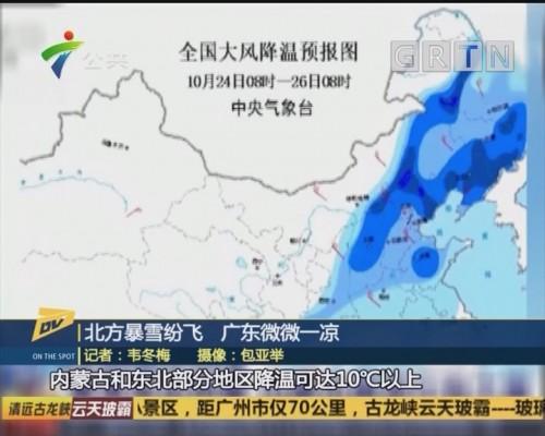 (DV现场)北方暴雪纷飞 广东微微一凉