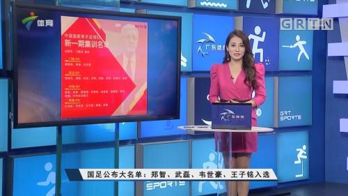 国足公布大名单:郑智、武磊、韦世豪、王子铭入选
