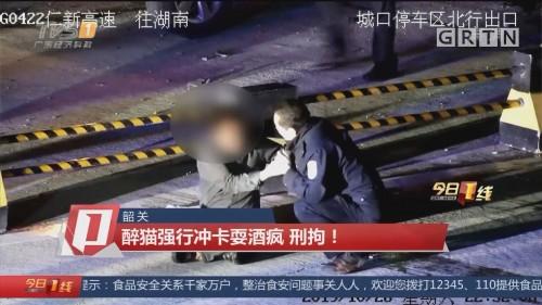 韶关:醉猫强行冲卡耍酒疯 刑拘!