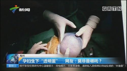 """梅州 孕妇生下""""透明蛋"""" 网友:莫非是哪吒?"""