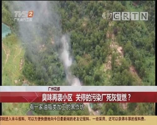 广州花都 臭味再袭小区 关停的污染厂死灰复燃?