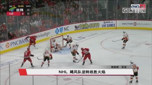 NHL 飓风队逆转战胜火焰