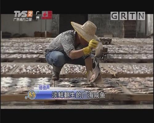 骆骆声:淡鲜翻生的广海咸鱼