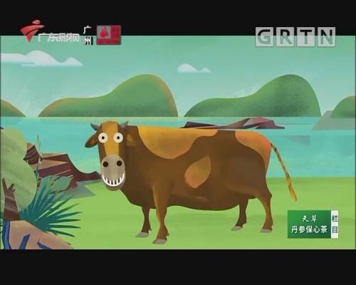 野趣大湾区-长寿之城 山水贺州