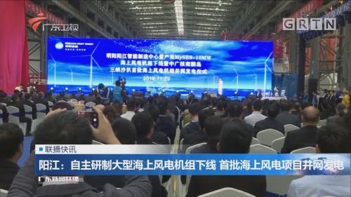 阳江:自主研制大型海上风电机组下线 首批海上风电项目并网发电