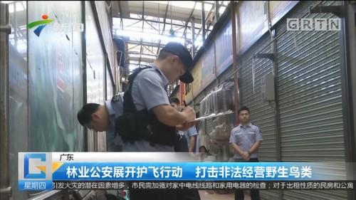 广东:林业公安展开护飞行动 打击非法经营野生鸟类
