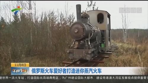 俄罗斯火车爱好者打造迷你蒸汽火车
