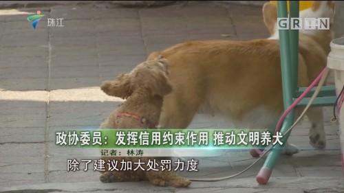 政协委员:发挥信用约束作用 推动文明养犬