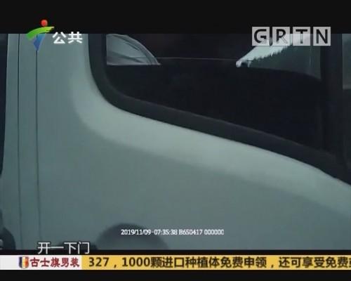 """(DV现场)商务车内传出猪叫 里面 """"坐""""了79头猪"""