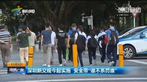 """深圳新交规今起实施 安全带""""谁不系罚谁"""""""