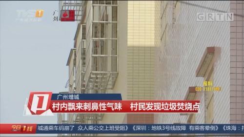 广州增城:村内飘来刺鼻性气味 村民发现垃圾焚烧点