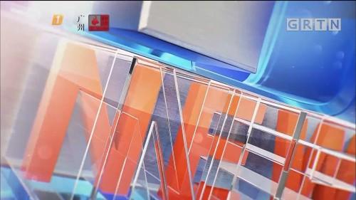 """[HD][2019-11-04]南方财经报道:上海:第二届进博会""""一流服务""""喜迎八方客"""