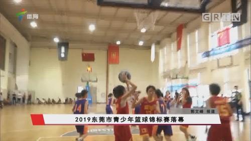 2019东莞市青少年篮球锦标赛落幕