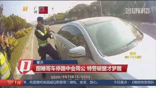 肇庆:酣睡哥车停路中会周公 特警砸窗才梦醒