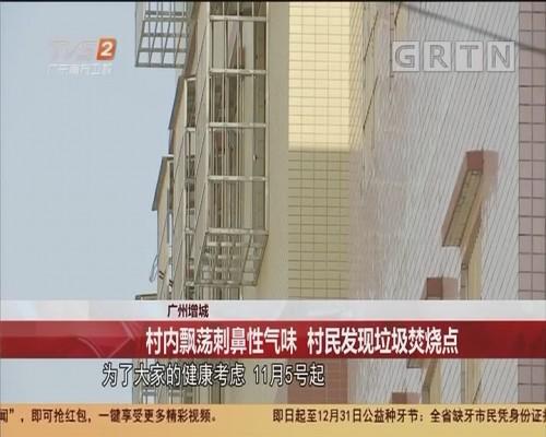 广州增城:村内飘荡刺鼻性气味 村民发现垃圾焚烧点