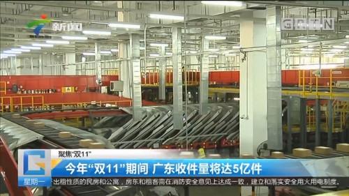 """聚焦""""双11"""" 今年""""双11""""期间 广东收件量将达5亿件"""