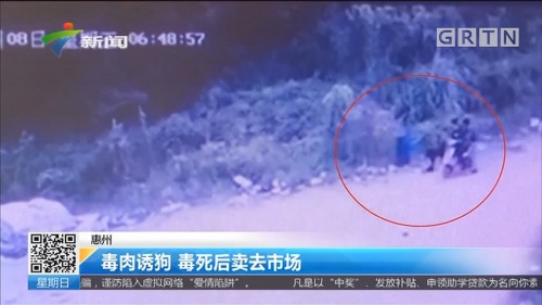 惠州:毒肉诱狗 毒死后卖去市场