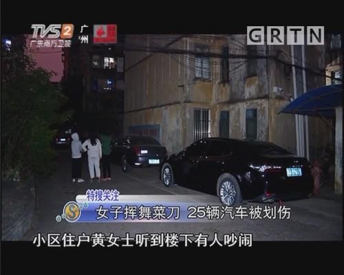 女子挥舞菜刀 25辆汽车被划伤