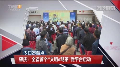 """肇庆:全省首个""""文明e驾惠""""微平台启动"""