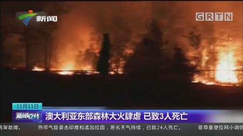 澳大利亚东部森林大火肆虐 已致3人死亡