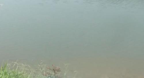肇庆:犯罪团伙疯狂盗采河沙 被一网打尽