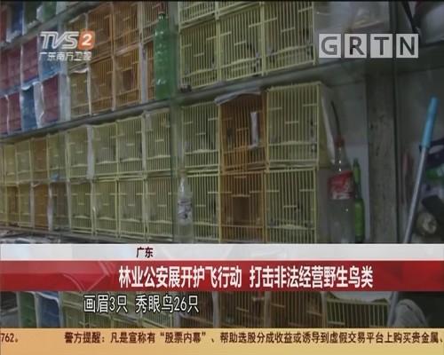 广东 林业公安展开护飞行动 打击非法经营野生鸟类