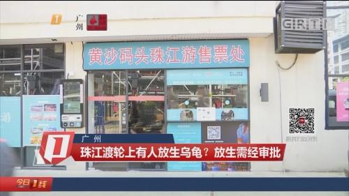 广州:珠江渡轮上有人放生乌龟? 放生需经审批