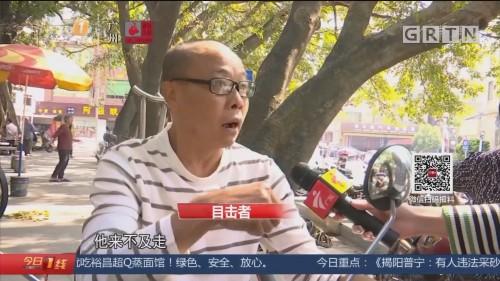 广州南沙:158年古树树干折断 砸晕环卫工