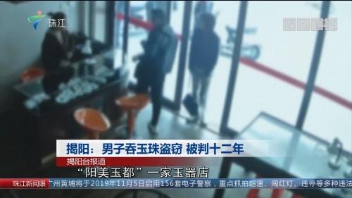 揭阳:男子吞玉珠盗窃 被判十二年