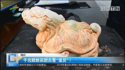 """梅州:千元就能买到古董""""宝贝""""?"""