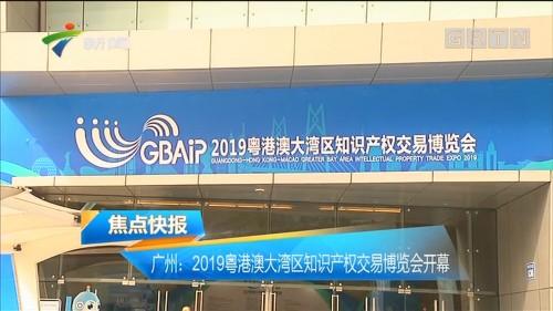 广州:2019粤港澳大湾区知识产权交易博览会开幕