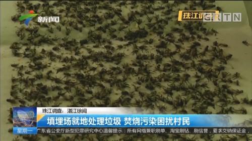 珠江调查:湛江徐闻 填埋场就地处理垃圾 焚烧污染困扰村民