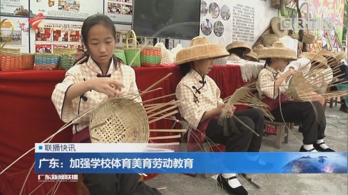 广东:加强学校体育美育劳动教育