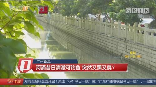 广州番禺:河涌昔日清澈可钓鱼 突然又黑又臭?
