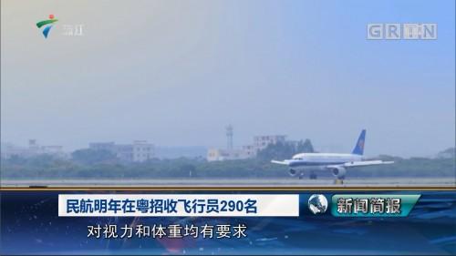 民航明年在粤招收飞行员290名