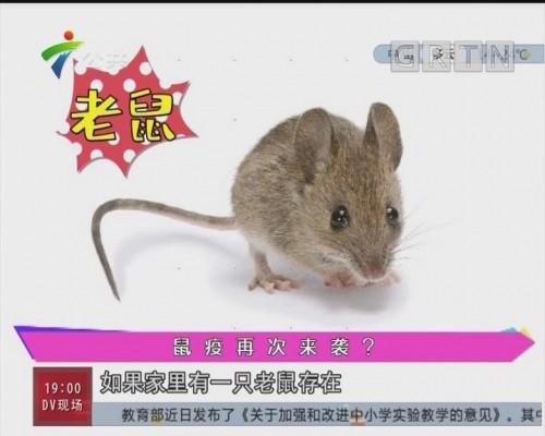 健康有料:鼠疫再次来袭?