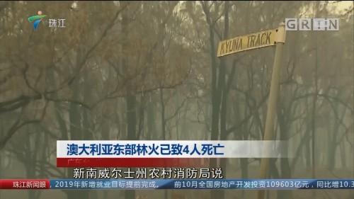 澳大利亚东部林火已致4人死亡