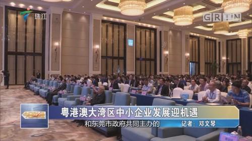 粤港澳大湾区中小企业发展迎机遇