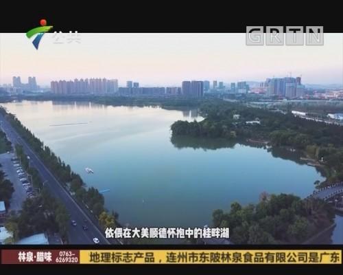 (DV现场)心水之旅-顺德桂畔湖