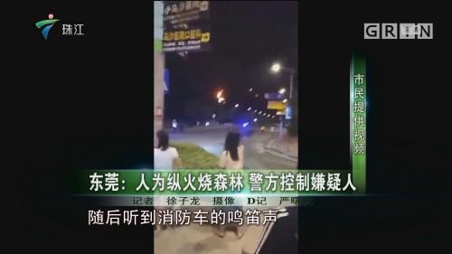 东莞:人为纵火烧森林 警方控制嫌疑人