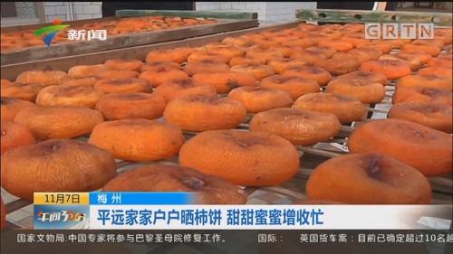 梅州:平远家家户户晒柿饼 甜甜蜜蜜增收忙