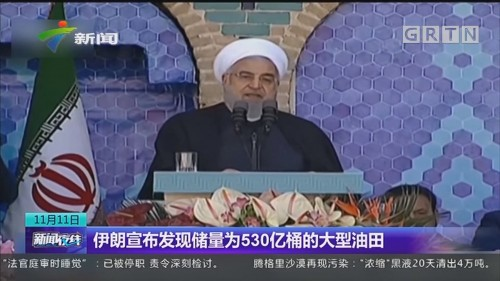伊朗宣布发现储量为530亿桶的大型油田